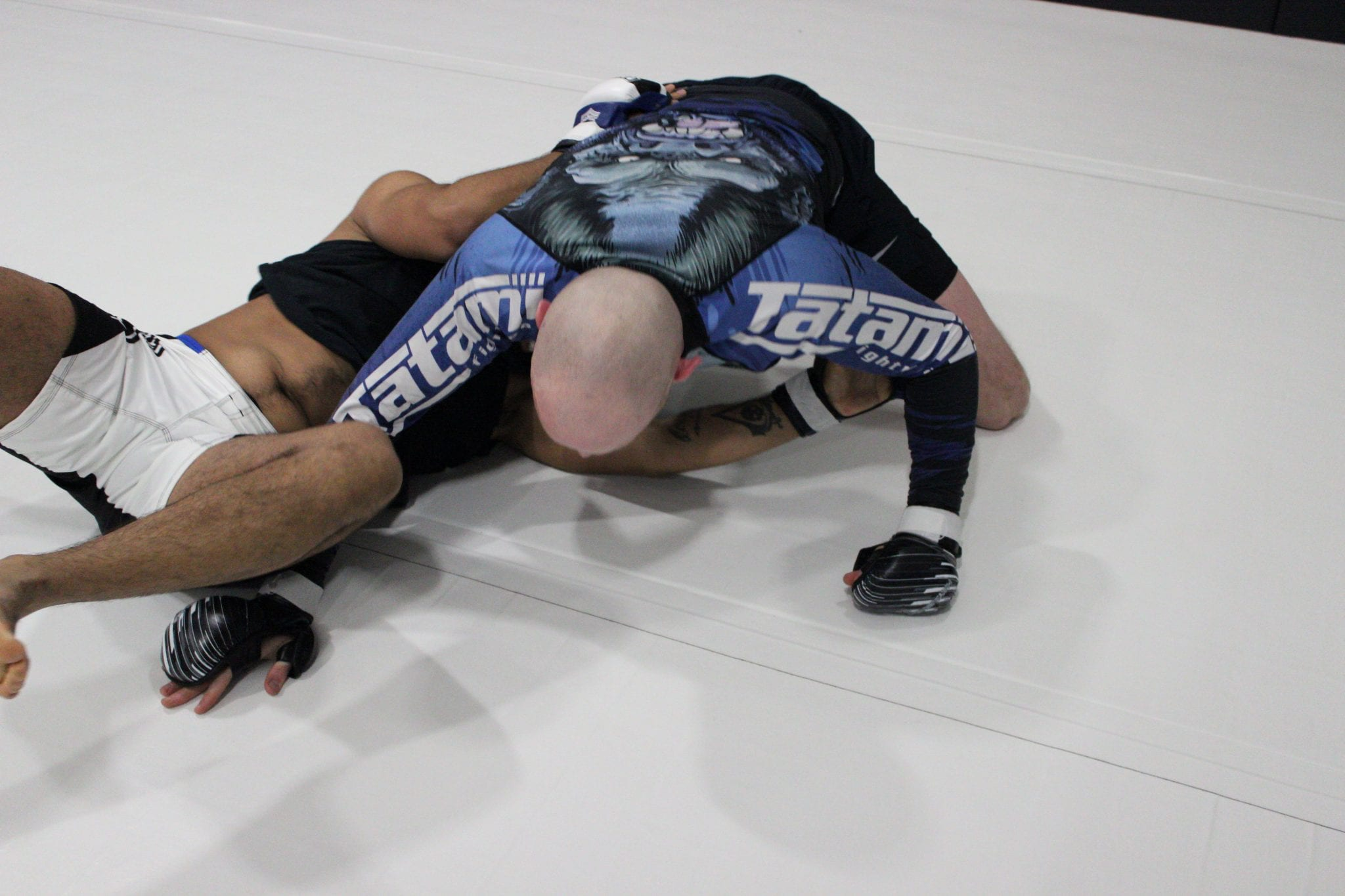 men mma grappling on white mat
